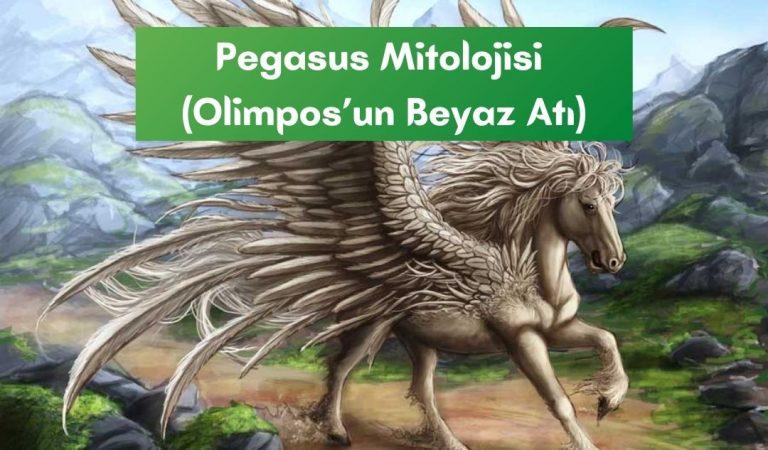 Pegasus Mitolojisi (Olimpos'un Beyaz Atı)